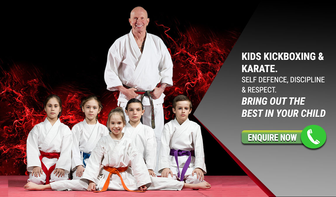 Teach your kids martial arts - respect - discipline & self defence